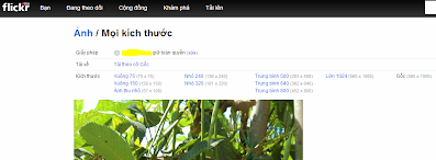 https://sites.google.com/site/sohosaigon/it---tools/chia-se-anh-truc-tuyen/flickr-cua-yahoo/image%20size.PNG